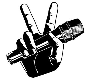 Voice-Hand002